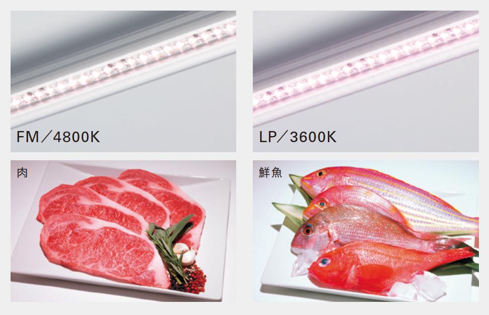 食べ物を見やすく、美味しそうに照らす冷蔵・冷凍ケース用照明