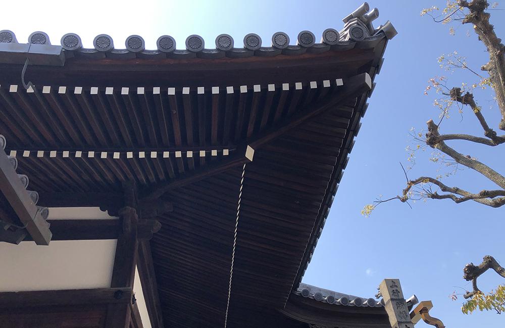 匠弘堂Interview 番外編「夜のライトアップはどう?社寺建築と照明」